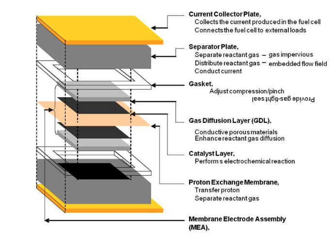 singlecell의 구조.png